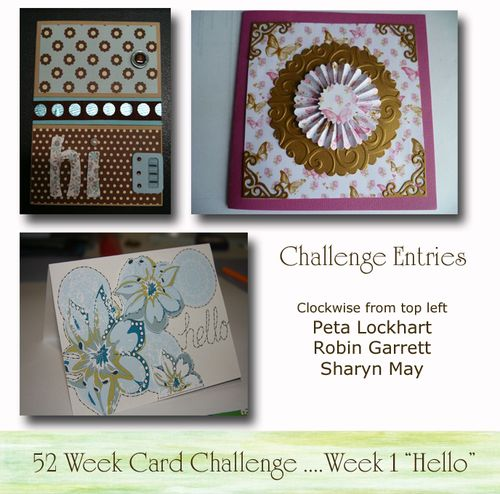 Challenge Entries Week 1
